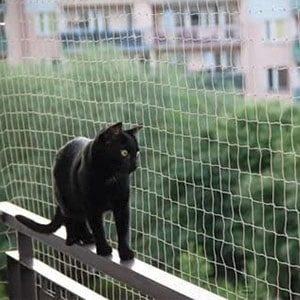 Red cotra palomas para balcon y terraza